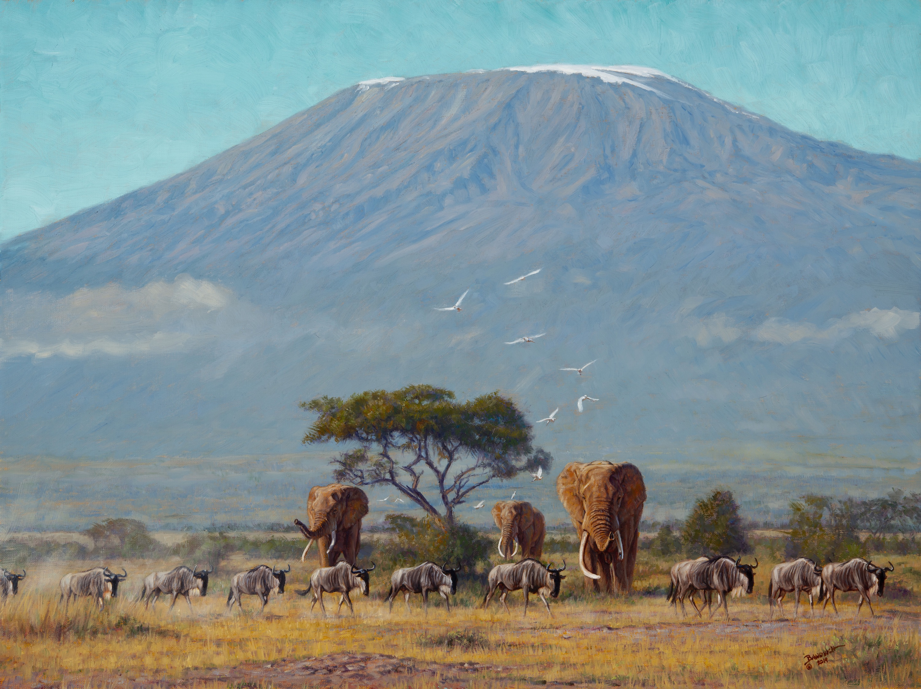 Near the Foothills of Kilimanjaro