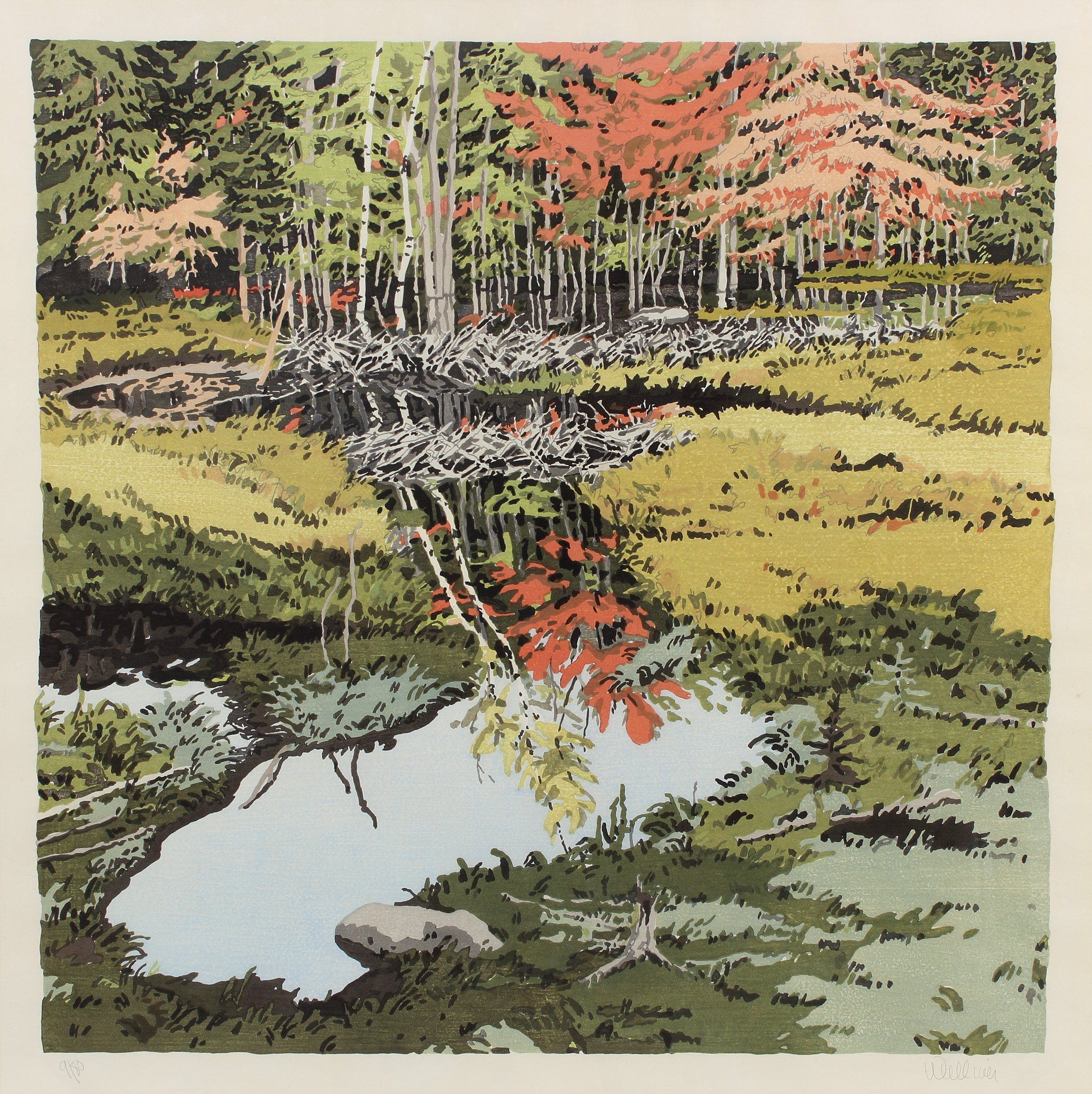 Study for New Dams in Meadow